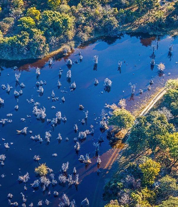 Okavango Delta 3