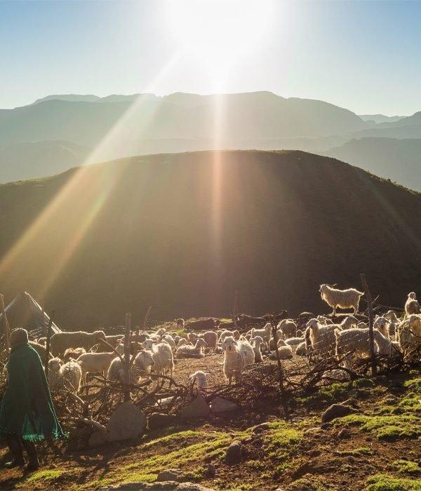 Lesotho 16
