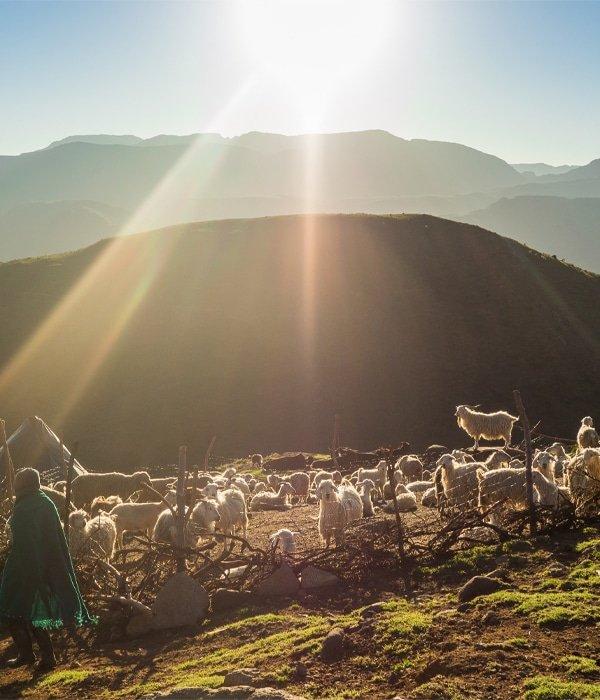 Lesotho 11