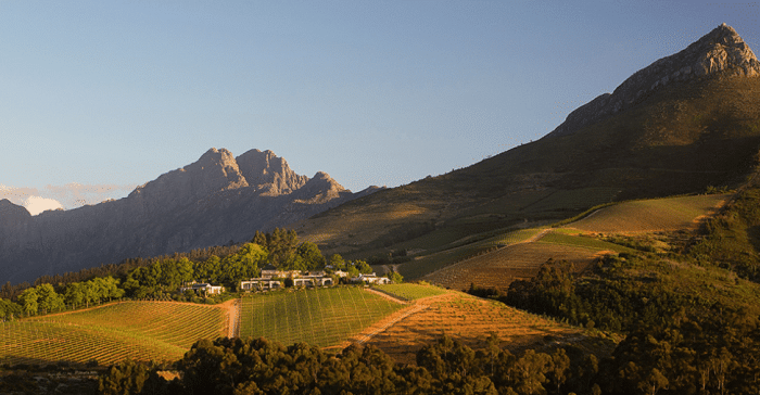 The Best of the Cape Winelands 7
