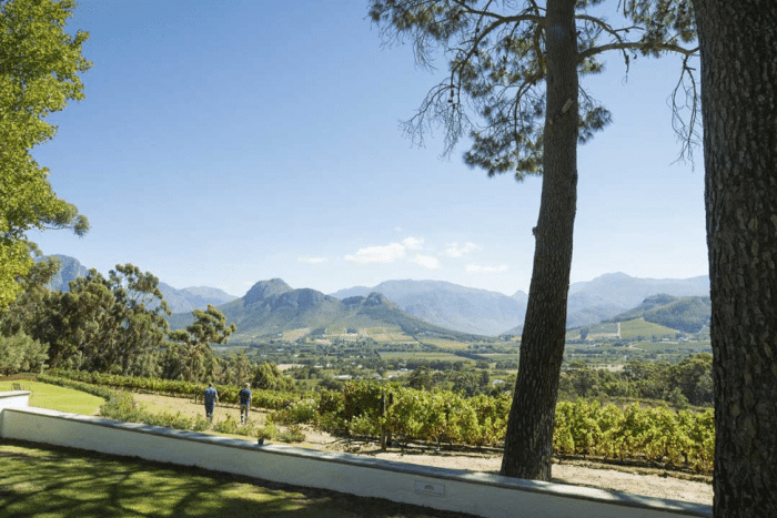 The Best of the Cape Winelands 10