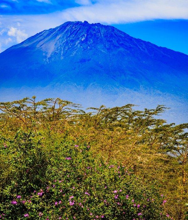 Tanzania 10
