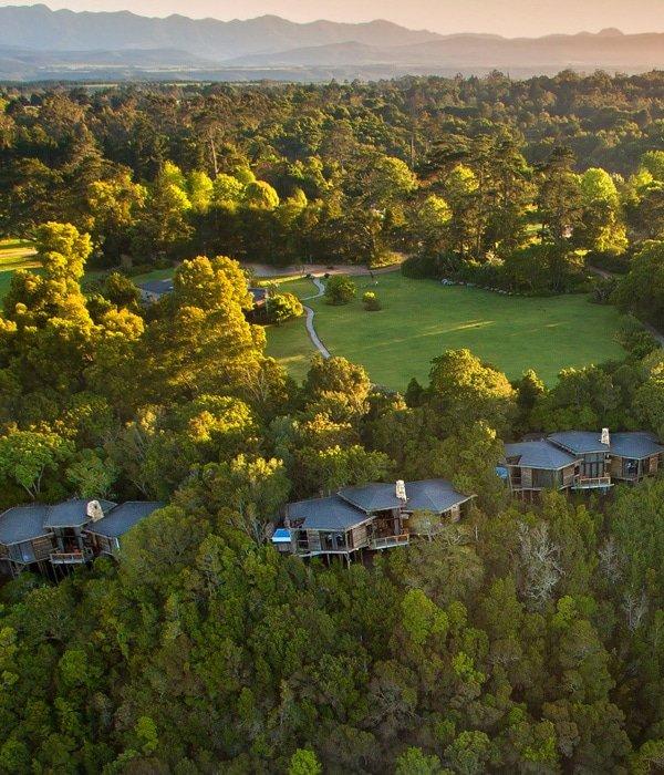 Tsala Treetop Lodge 11