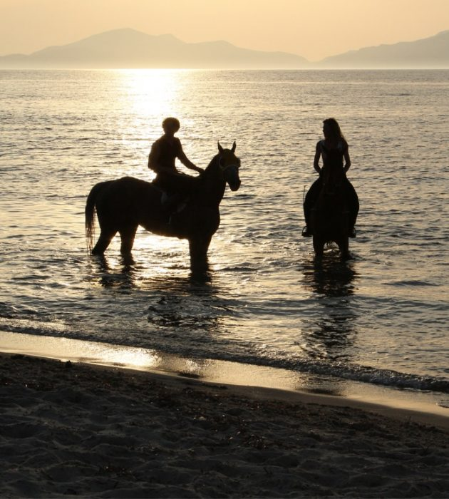 Horse-Riding On The Beach 1