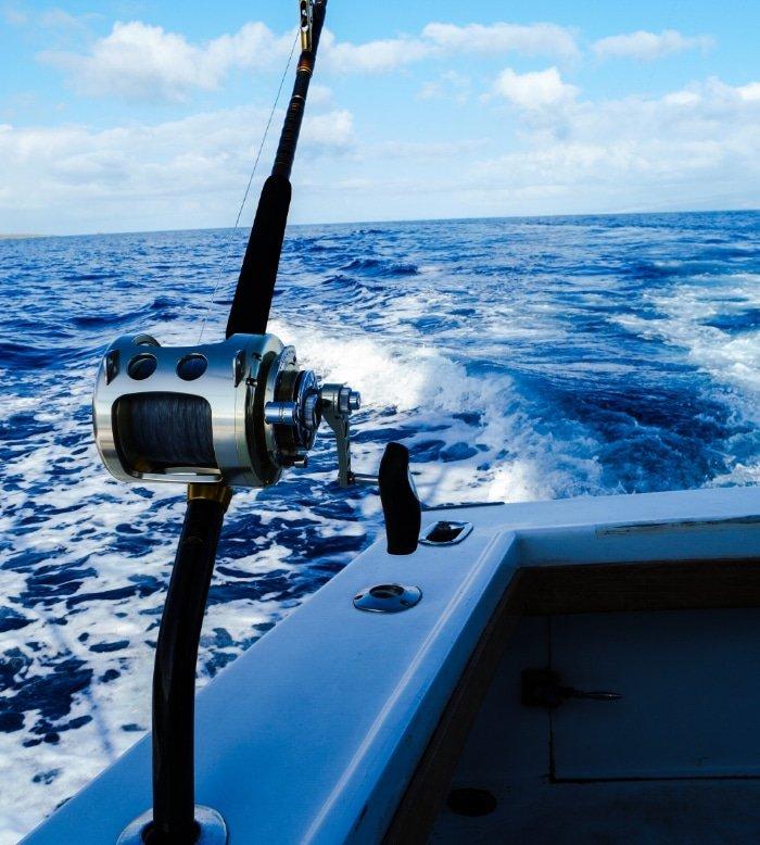 Deep-Sea Fishing Excursion 7