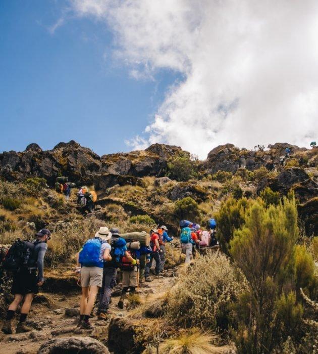 Hike Kilimanjaro 12