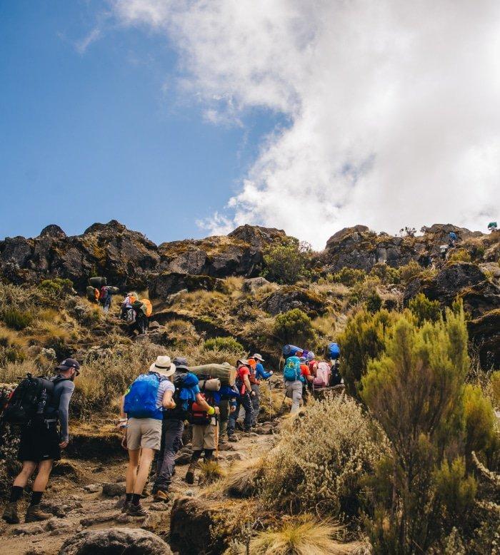Hike Kilimanjaro 3