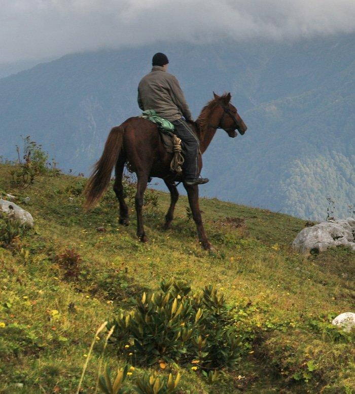 Horseback Safari 8