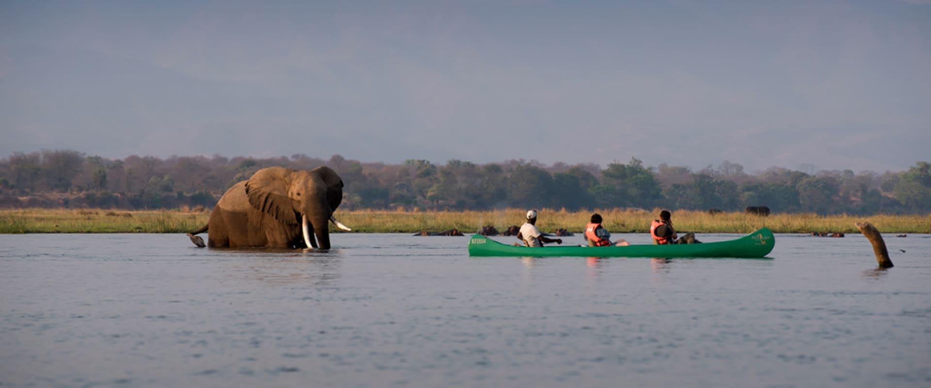 Enjoy a thrilling Zambezi canoe safari