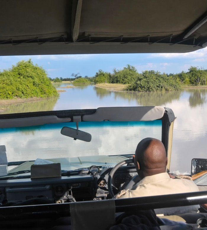 Okavango Safari 5