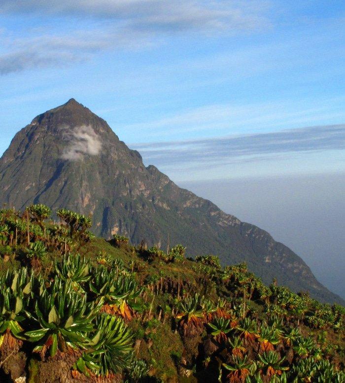 Volcano Climbing 1
