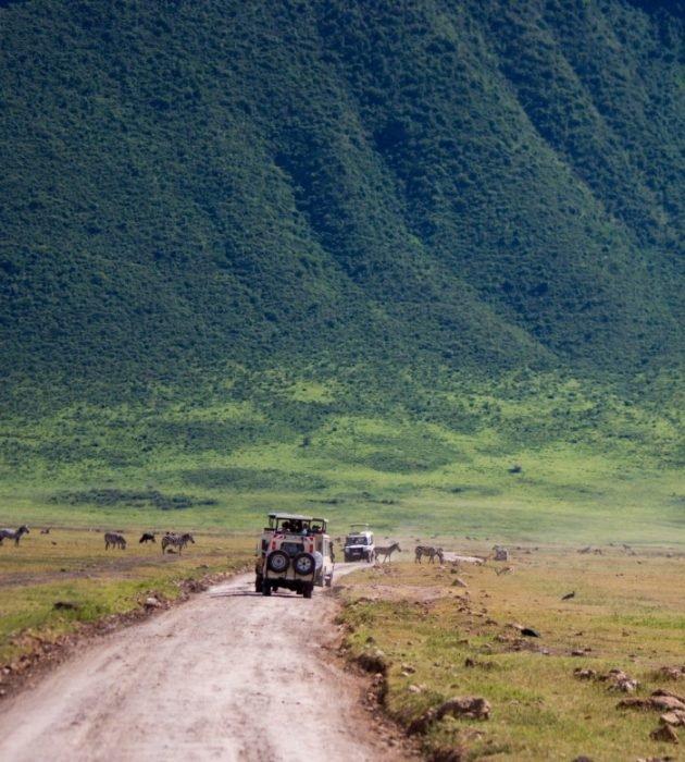 Safari Through The Tanzanian Conservancy 18