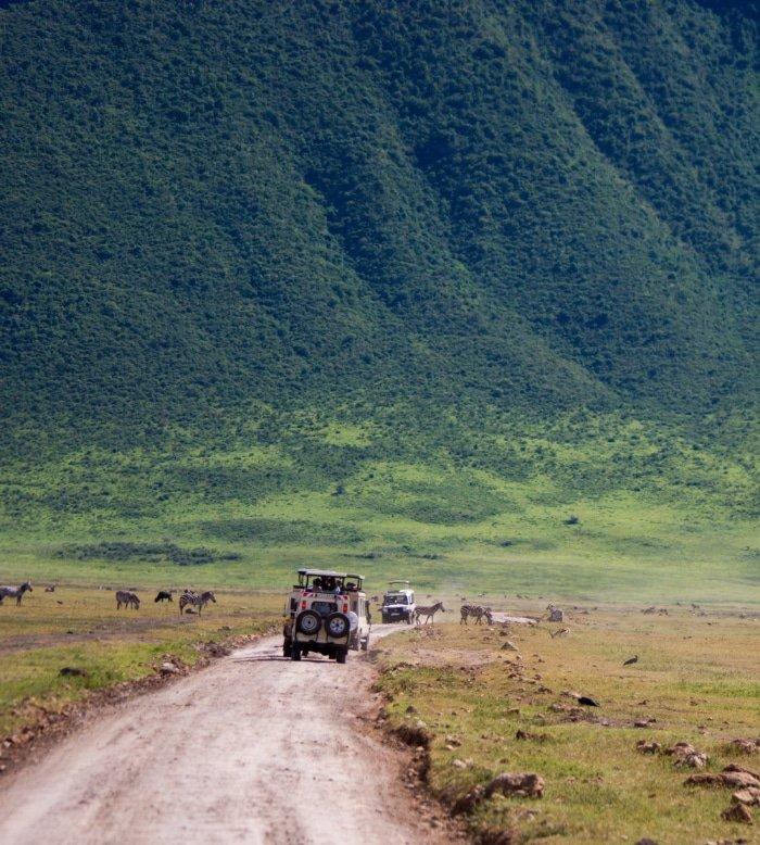 Safari Through The Tanzanian Conservancy 1