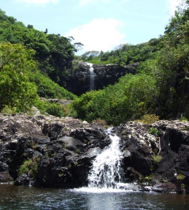 Visit Tamarin Falls 5