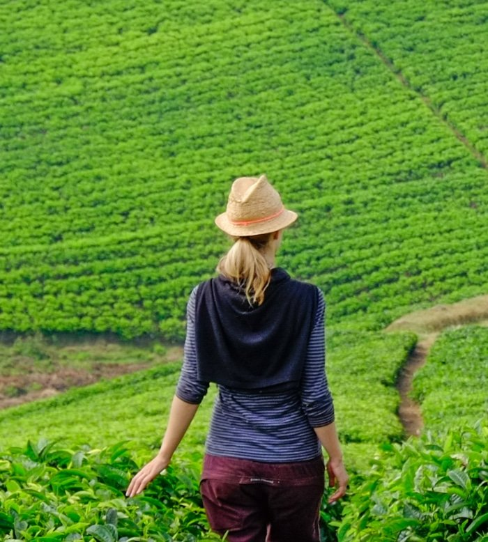 Visit Tea Plantations 1