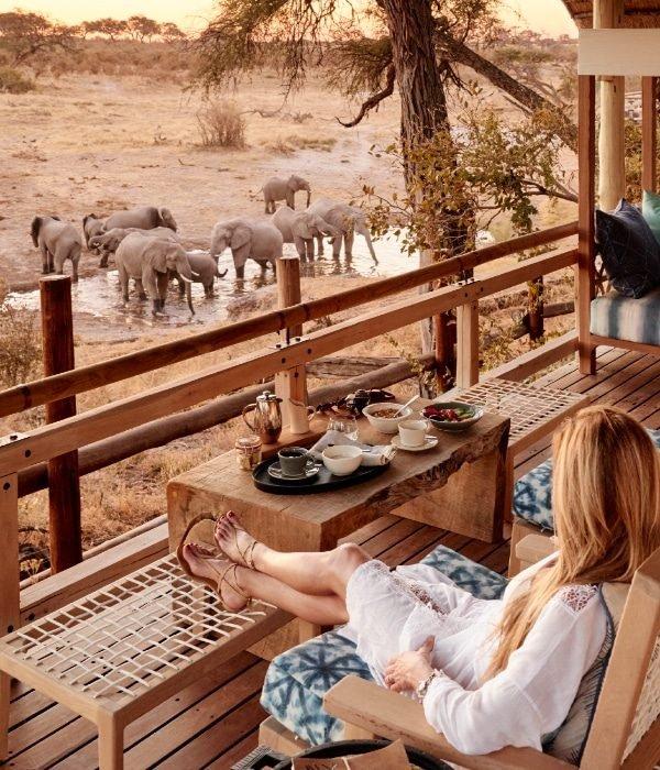 Belmond Savute Elephant Lodge 9
