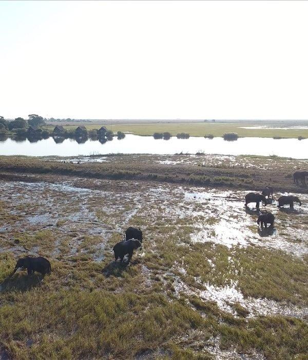 Chobe Water Villas 3