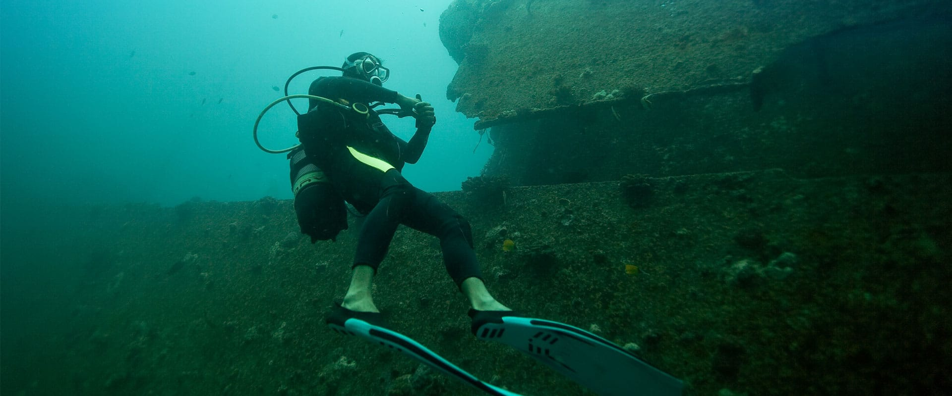 Dive and explore shipwrecks with secrets waiting for you to uncover