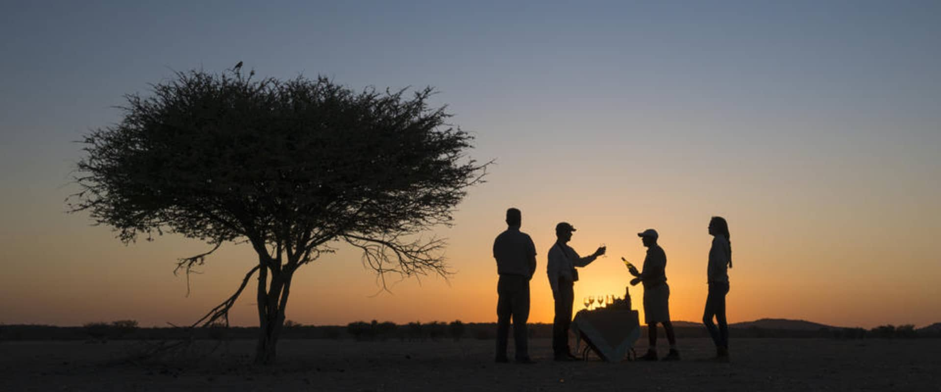 View game in the Onguma Game Reserve at sunset