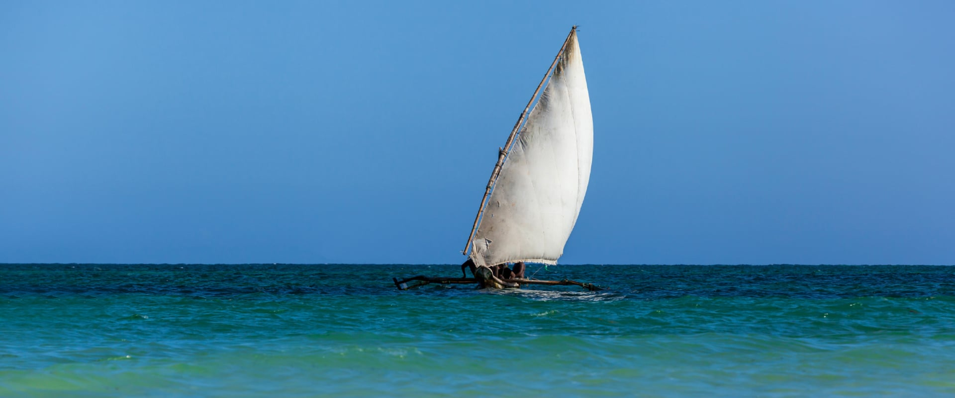 Go sailing on a Dhow to the Kisite Marine National Park