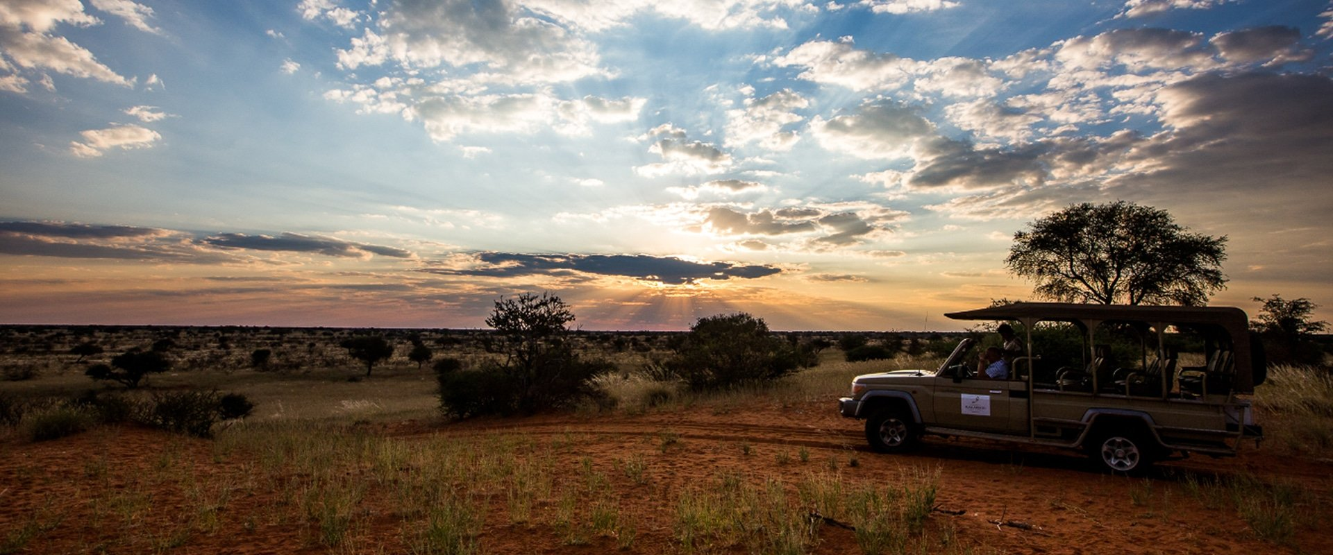 Take in the sites of the Kalahari Dunes at sunset