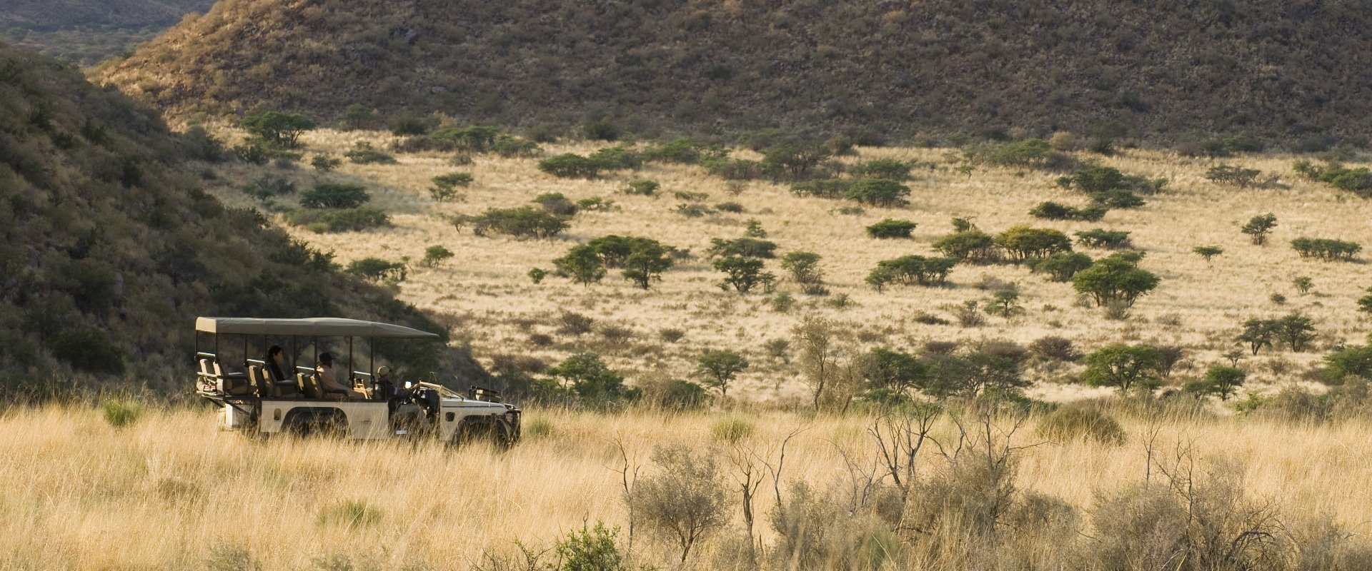 Game drives to discover the diverse array of rare and endangered species