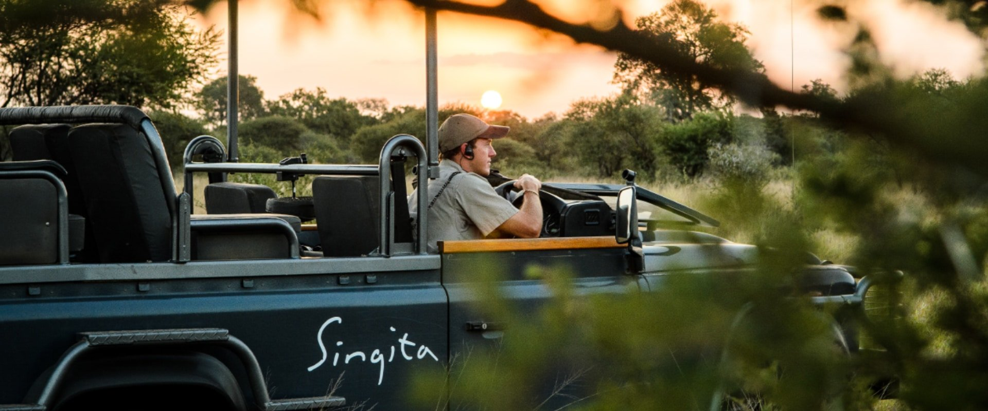 Participate in an afternoon game drive