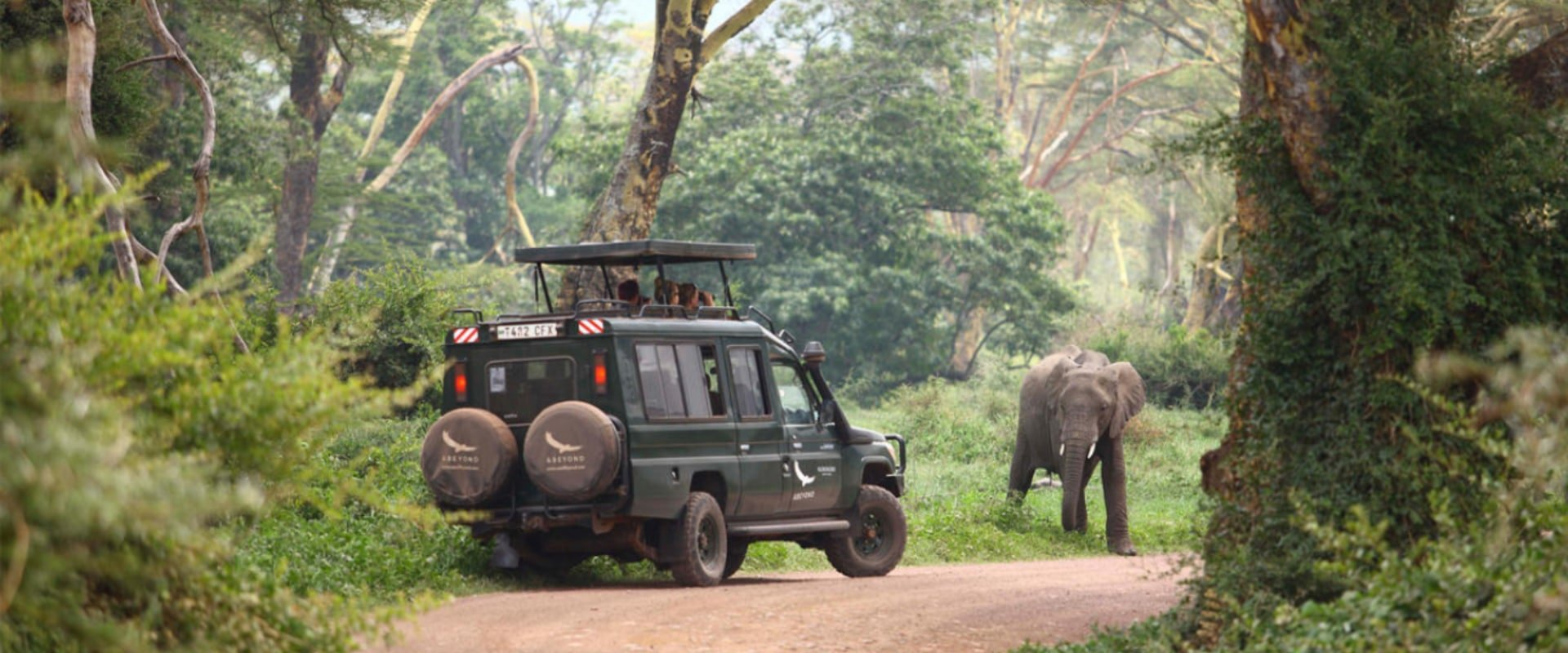 Enjoy spectacular game drives on the Crater floor