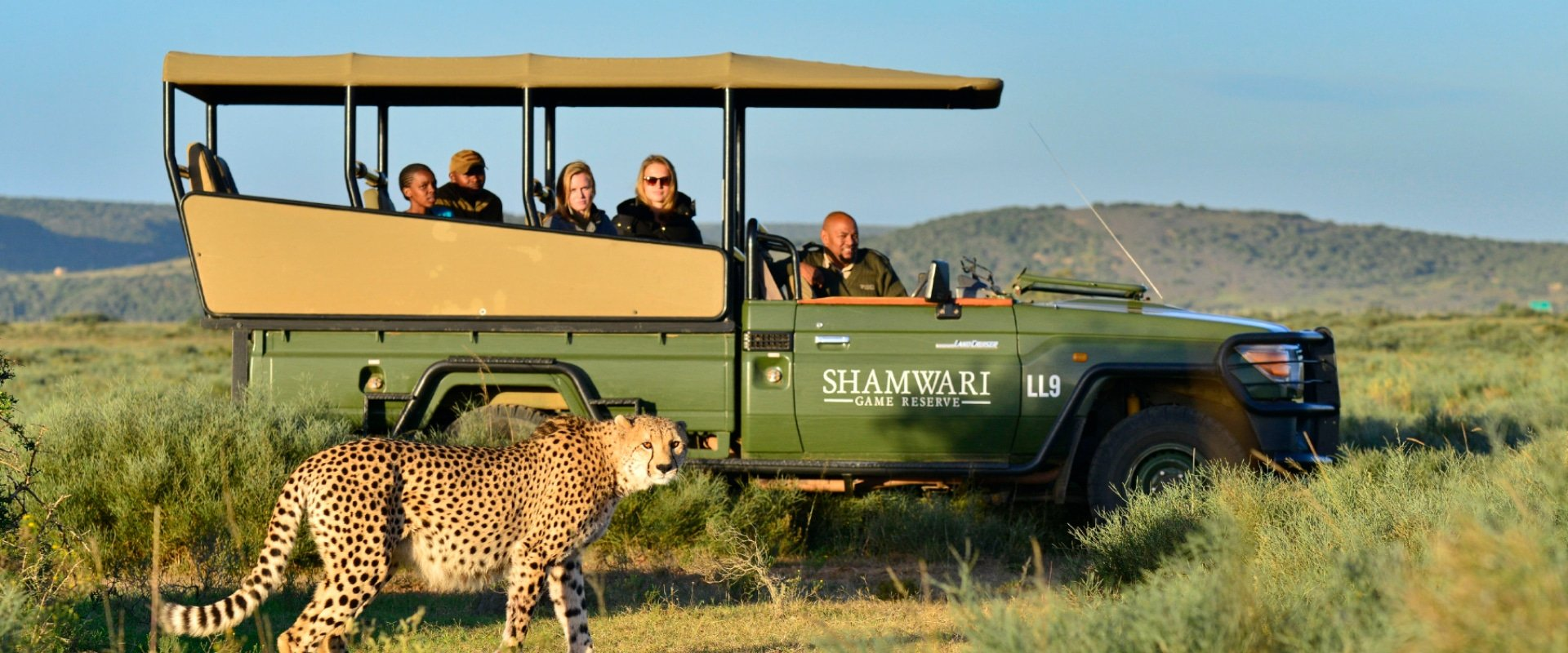Search for the Big 5 on a safari drive