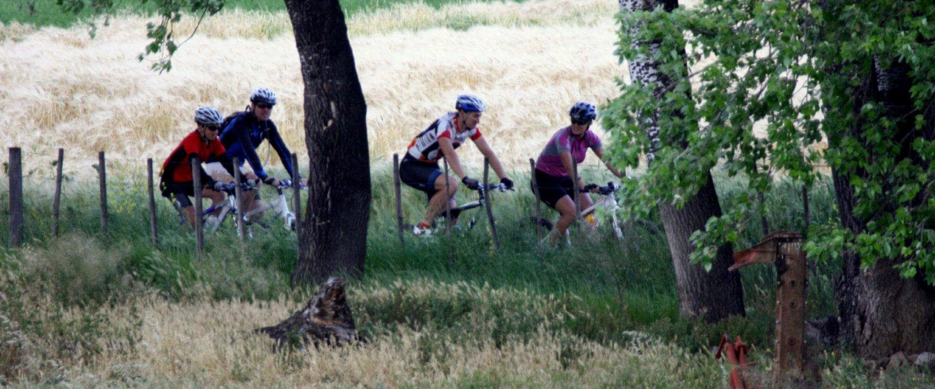 Ride a mountain bike through the countryside