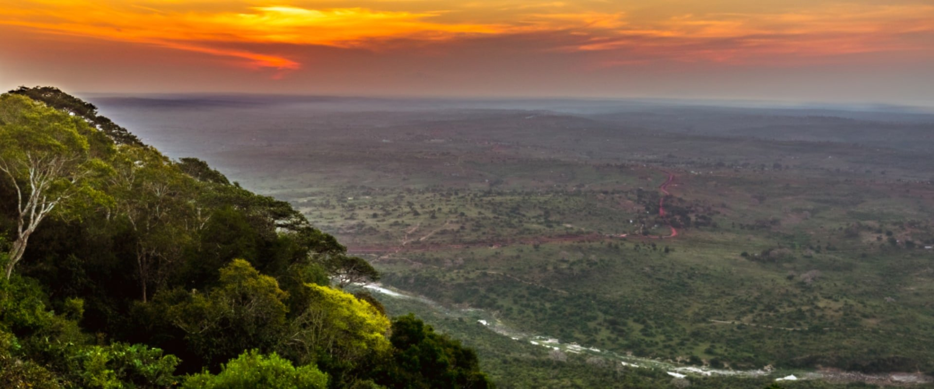 Immerse yourself in a day safari to Shimba Hills