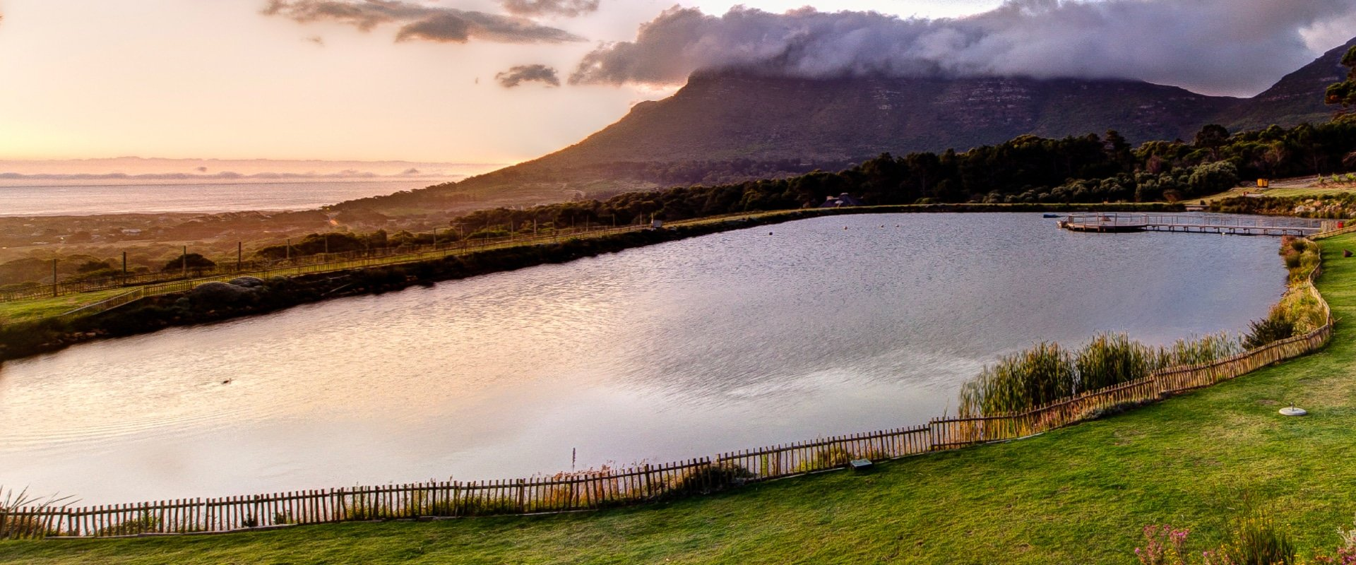 Laze on the lawns and enjoy the best vineyard picnic experience in town