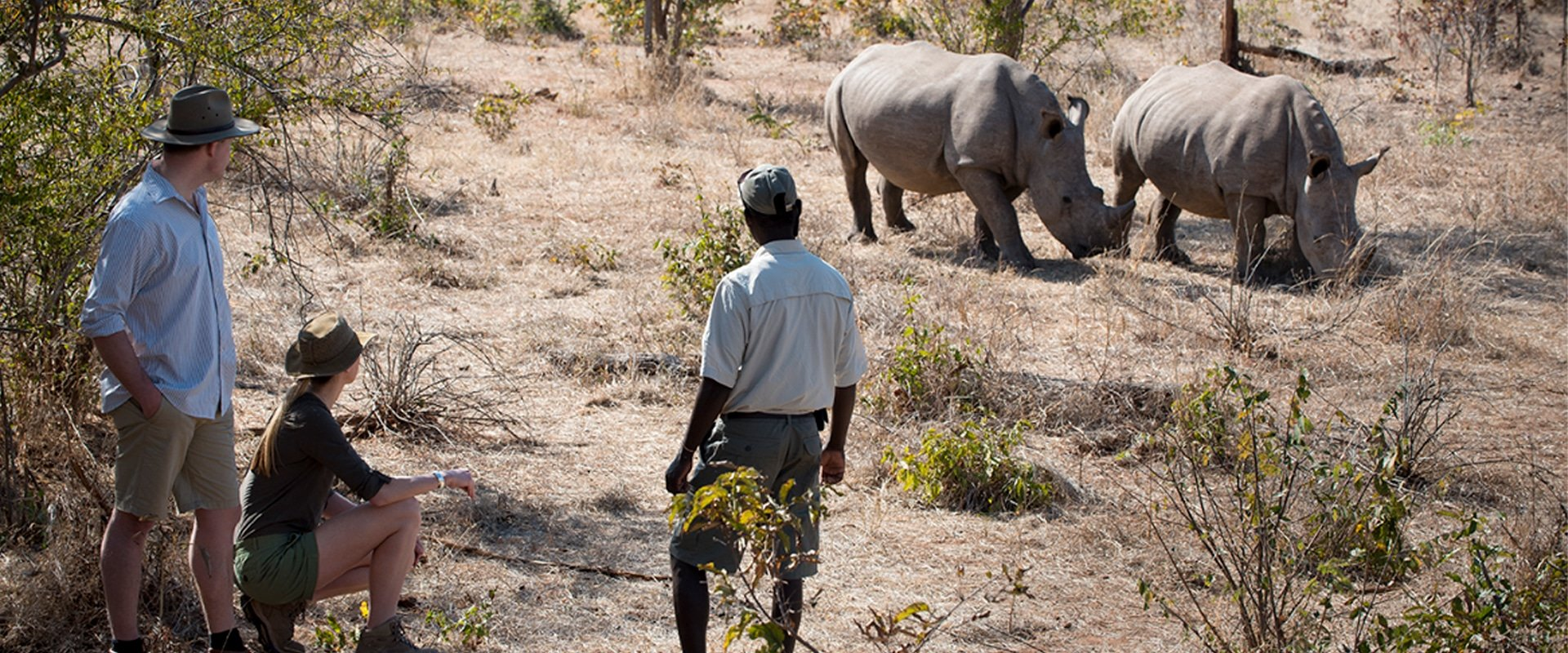 Feel the thrill of a walking safari in search of rhinos