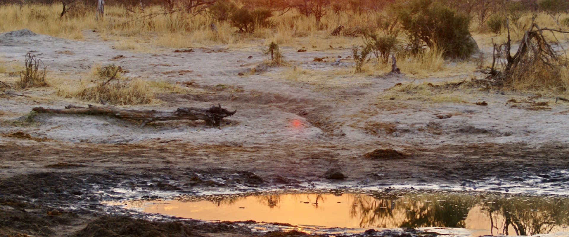 Watch the sunset over Fisher's Pan waterhole
