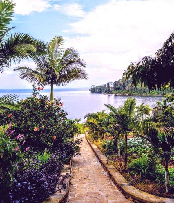 Paradise Kivu 3