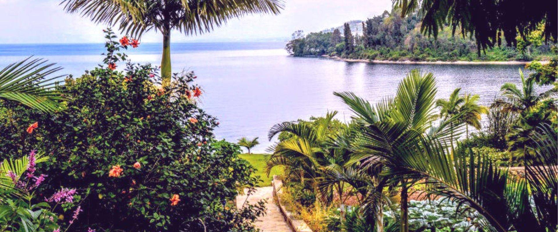 Paradise Kivu