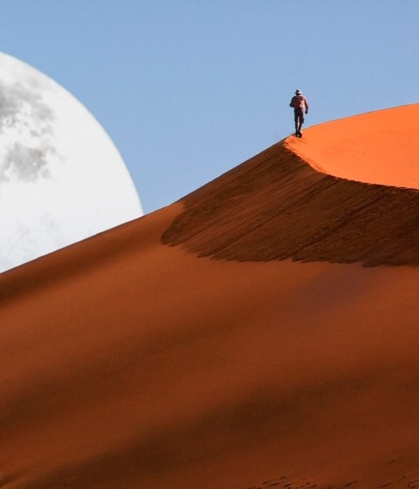 Sossusvlei & The Namib Desert 9