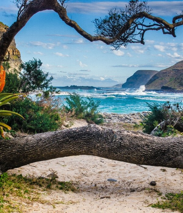 Discover South Africa's Wild Coast 8