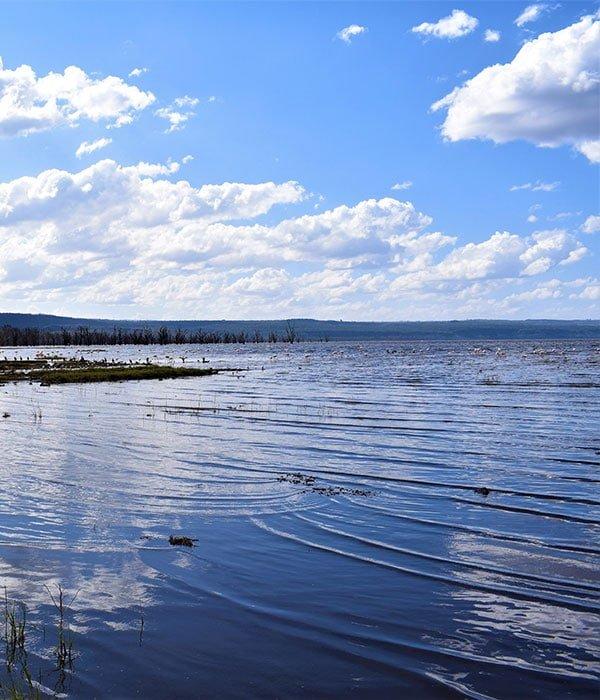 Lake Nakuru 4